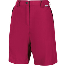 Regatta Chaska II Shorts Women dark cerise